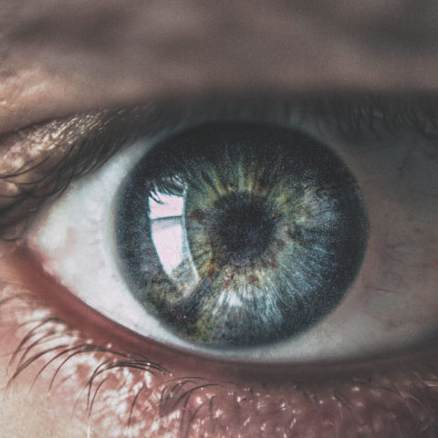 101 Quick And Fun Facts About The Eyes