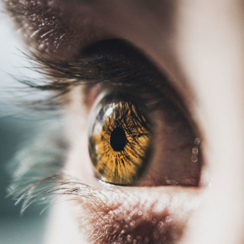 25 Weird Facts You Didnt Know About Eyes featured