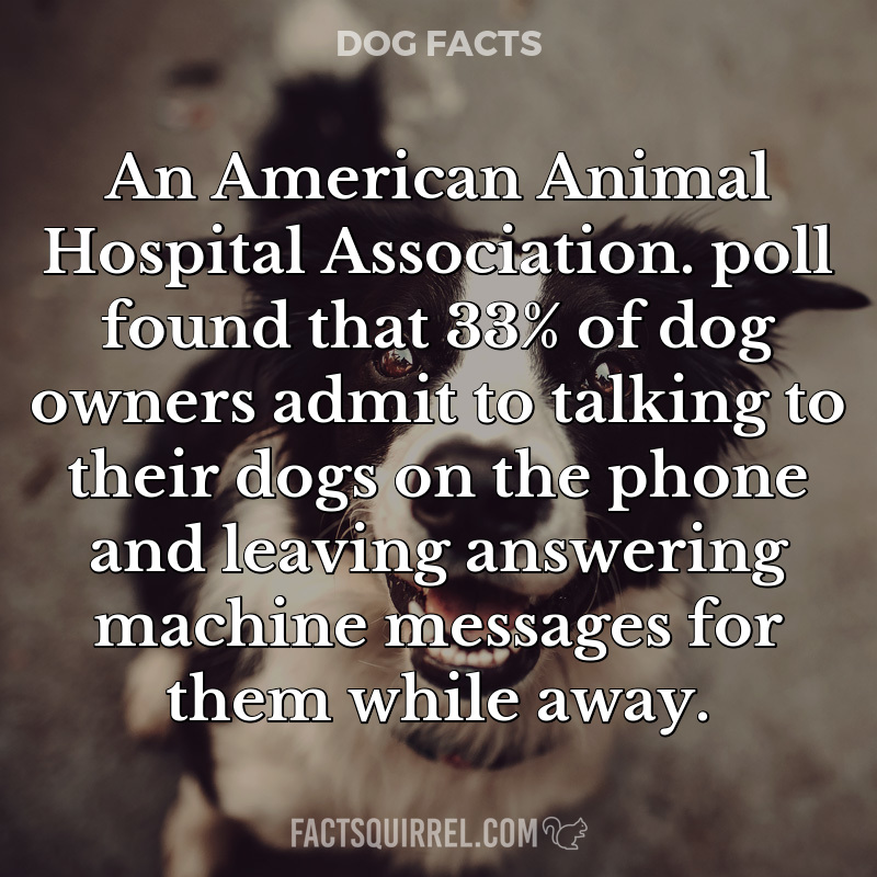 An American Animal Hospital Association. poll found that 33% of dog