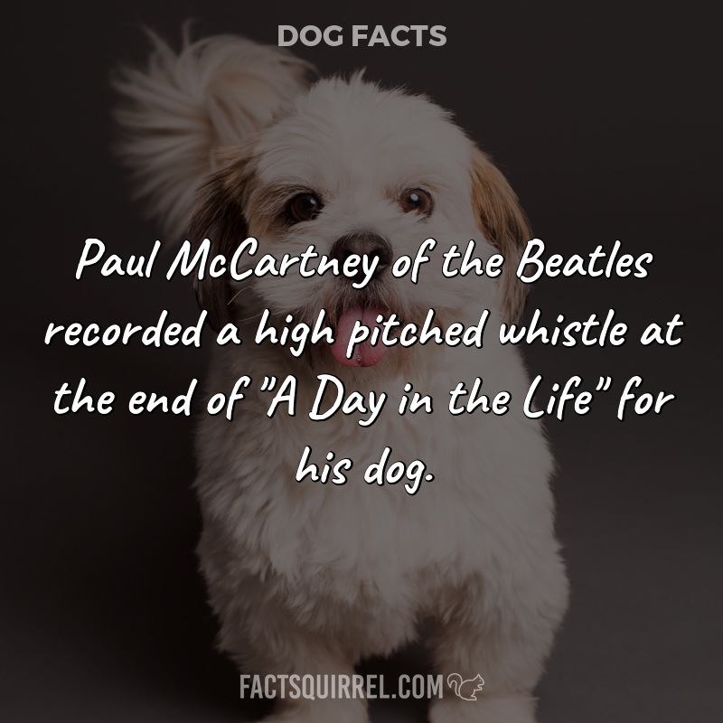 Paul McCartney of the Beatles recorded a high pitched whistle at the end