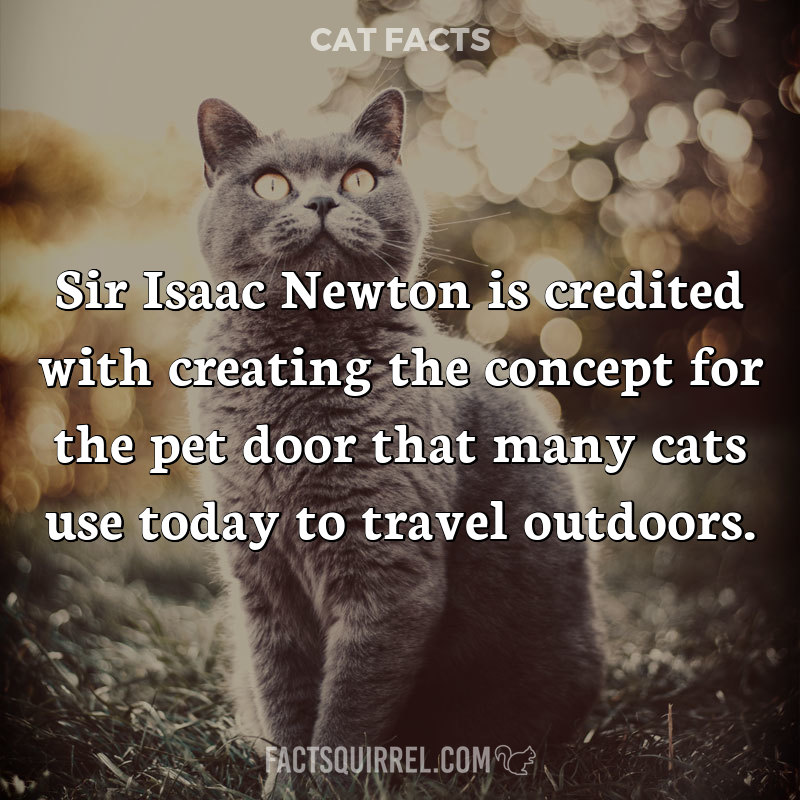 Sir Isaac Newton is credited with creating the concept for the pet door